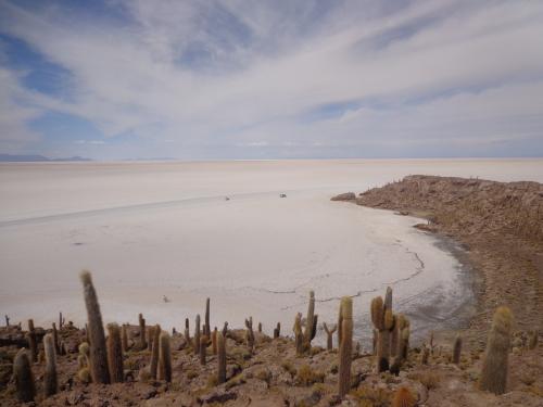 Isla Incahuasi - Salar de Uyuni - Bolívia