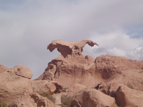 Condor sin Cabeza - Valle de Las Rocas - Bolívia