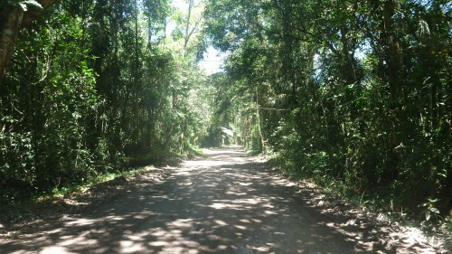 Estrada do Puruba - Ubatuba
